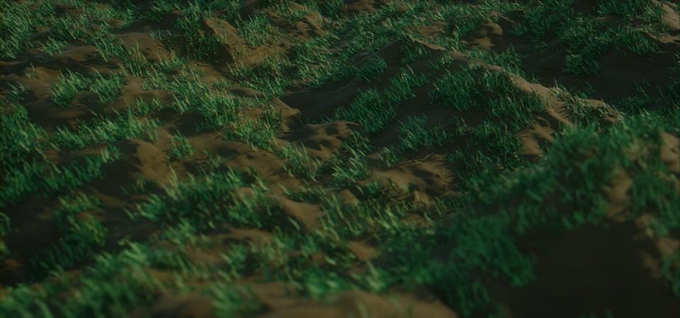 画像に alt 属性が指定されていません。ファイル名: grass.jpg
